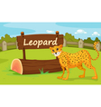 Zoo animal vector