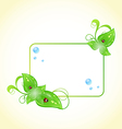 Eco friendly frame with green leaves and ladybugs vector
