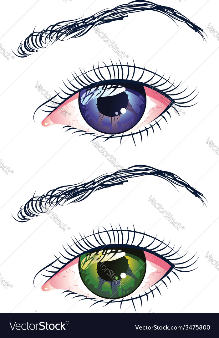 Violet and green eyes vector | Price: 1 Credit (USD $1)
