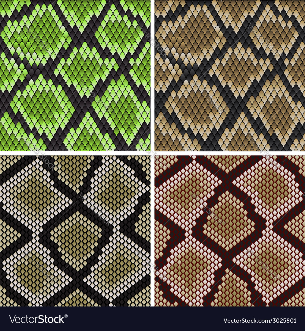 Seamless snake skin patterns vector | Price: 1 Credit (USD $1)