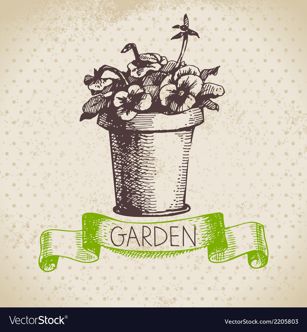 Vintage sketch gardening background vector | Price: 1 Credit (USD $1)
