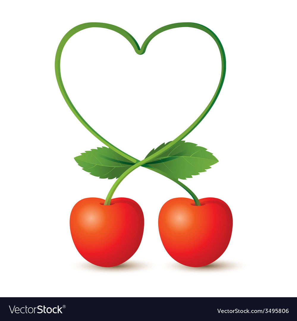 Cherries and heart shape stem vector | Price: 1 Credit (USD $1)