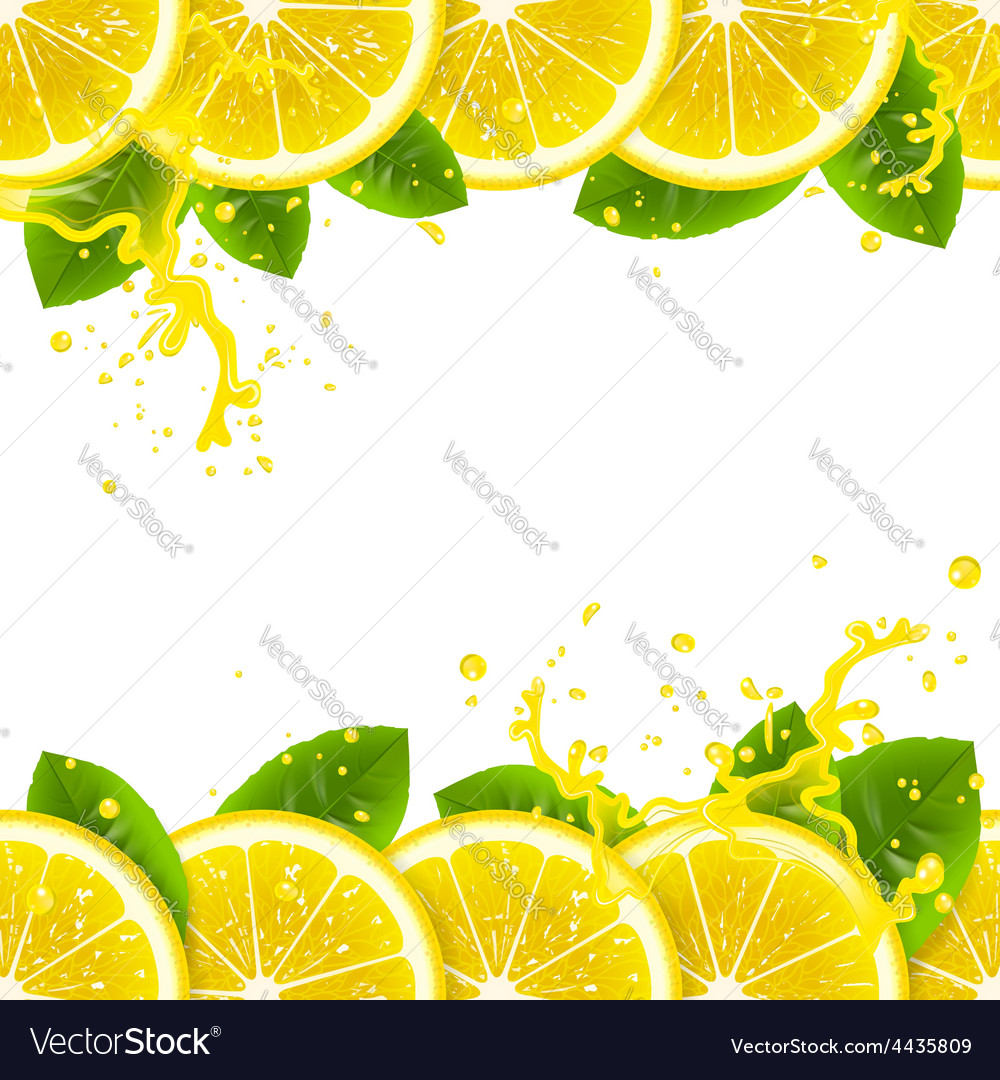 Banner with fresh lemons vector | Price: 1 Credit (USD $1)