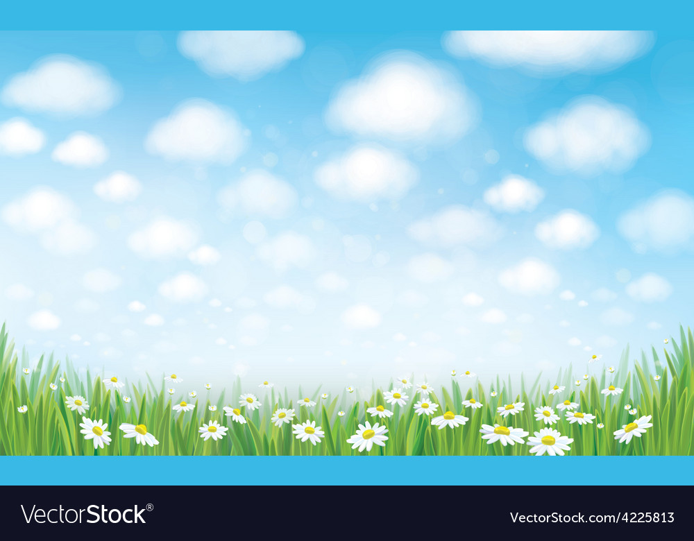 Sky field landscape vector | Price: 1 Credit (USD $1)