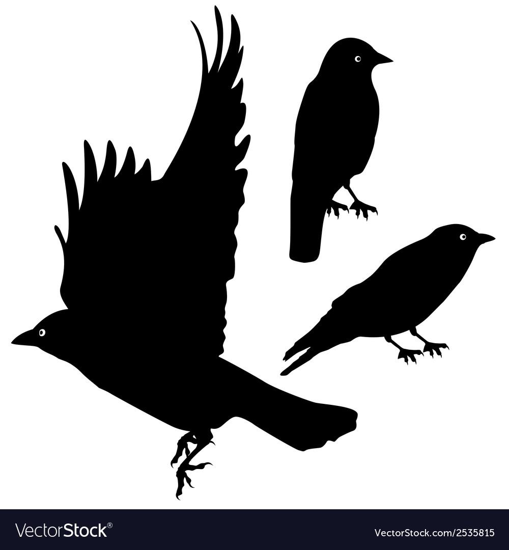 Birds silhouette template set plus eps10 vector | Price: 1 Credit (USD $1)