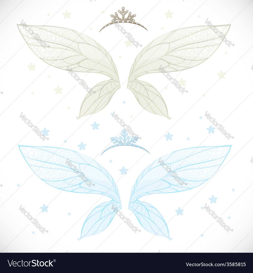Winter fairy wings with tiara bundled isolated on vector | Price: 1 Credit (USD $1)