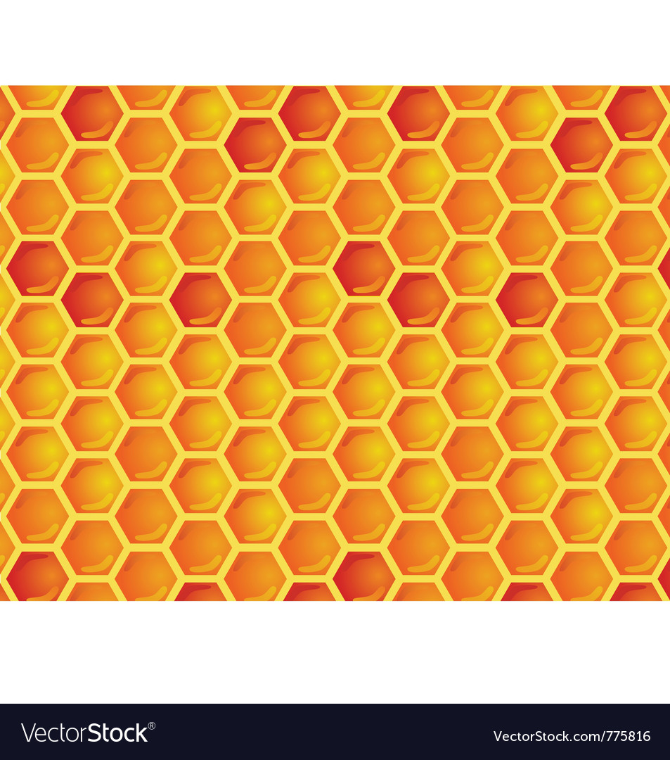 Seamless pattern of honeycomb vector   Price: 1 Credit (USD $1)