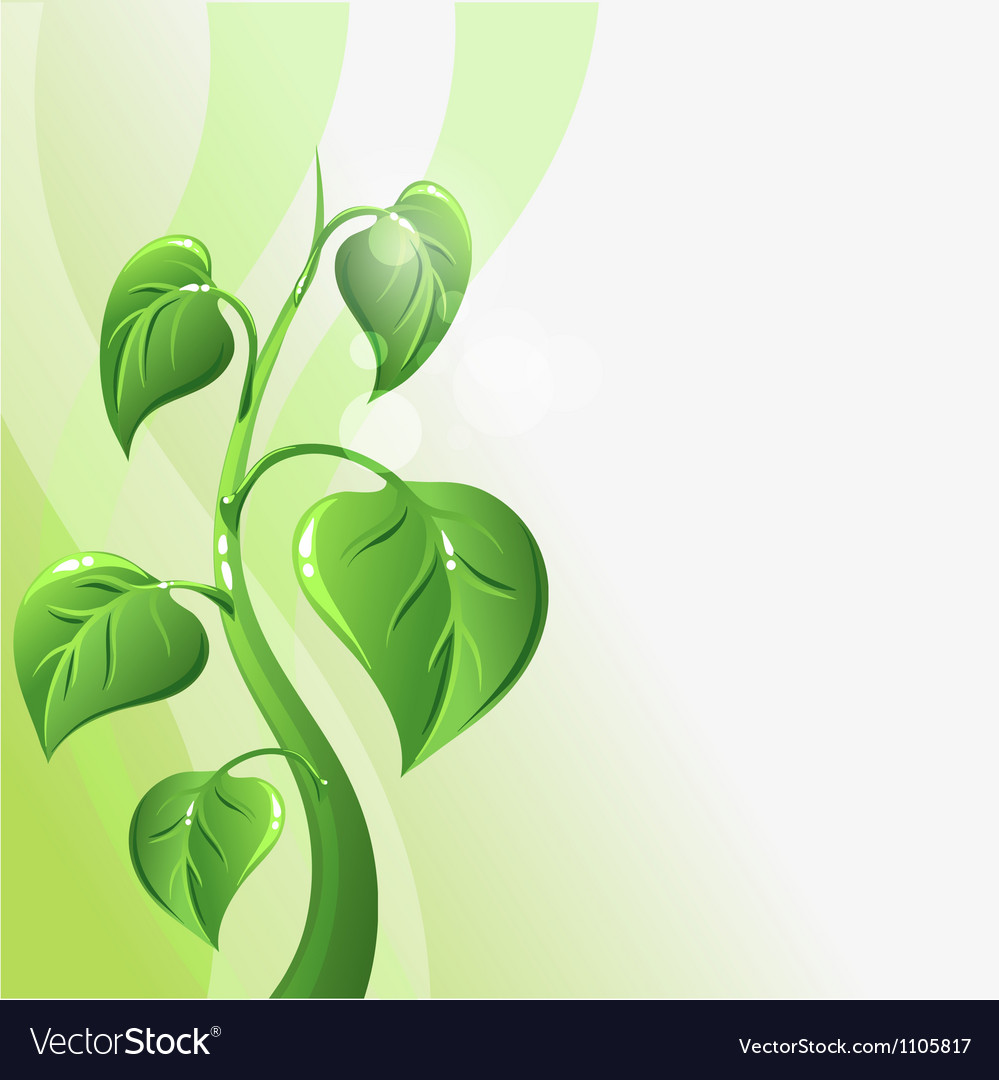 Green sprout with leaves and copyspace for your vector | Price: 1 Credit (USD $1)