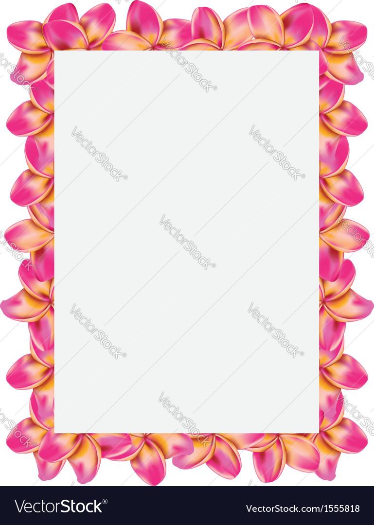 Frangipani frame vector   Price: 1 Credit (USD $1)