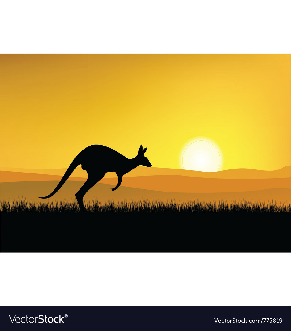 Kangaroo with sunset background vector | Price: 1 Credit (USD $1)