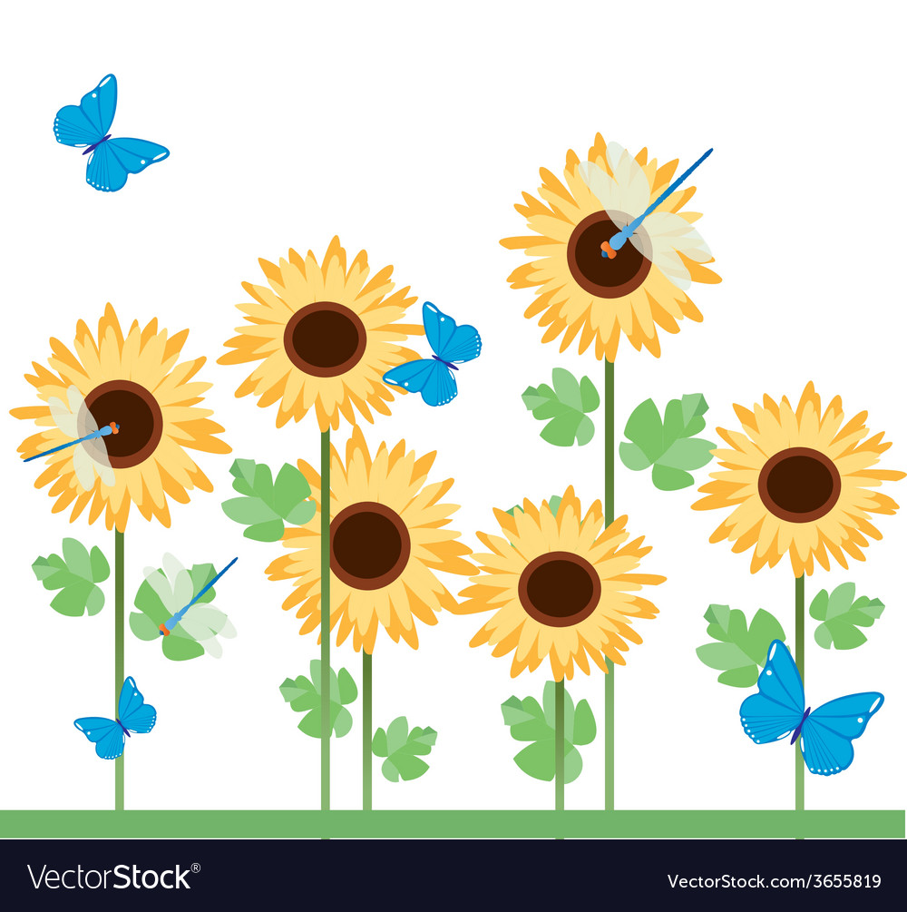 Sunflowers-with-diferent-insects vector | Price: 1 Credit (USD $1)