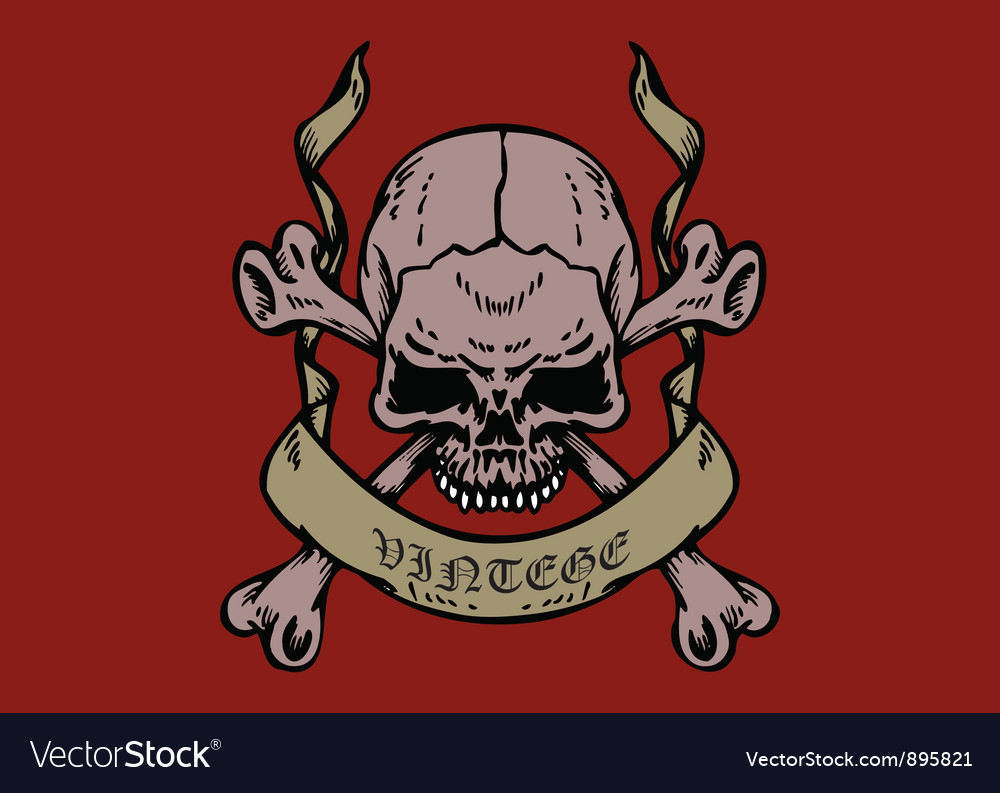 Skull with parchment vector | Price: 1 Credit (USD $1)