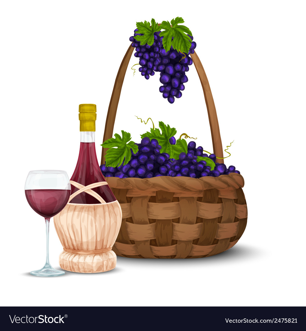 Wine grape and wine basket vector | Price: 1 Credit (USD $1)
