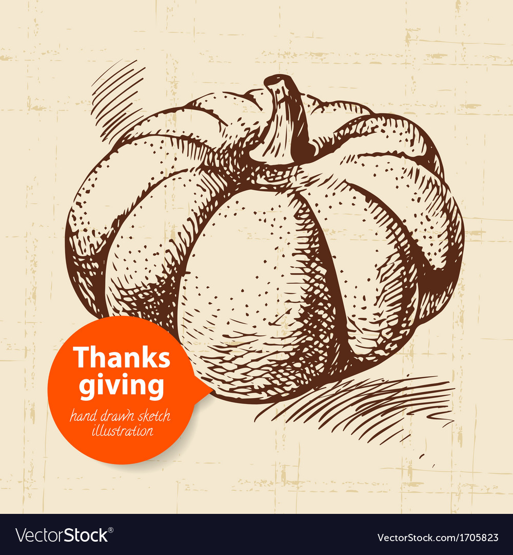 Hand drawn vintage thanksgiving day vector | Price: 1 Credit (USD $1)