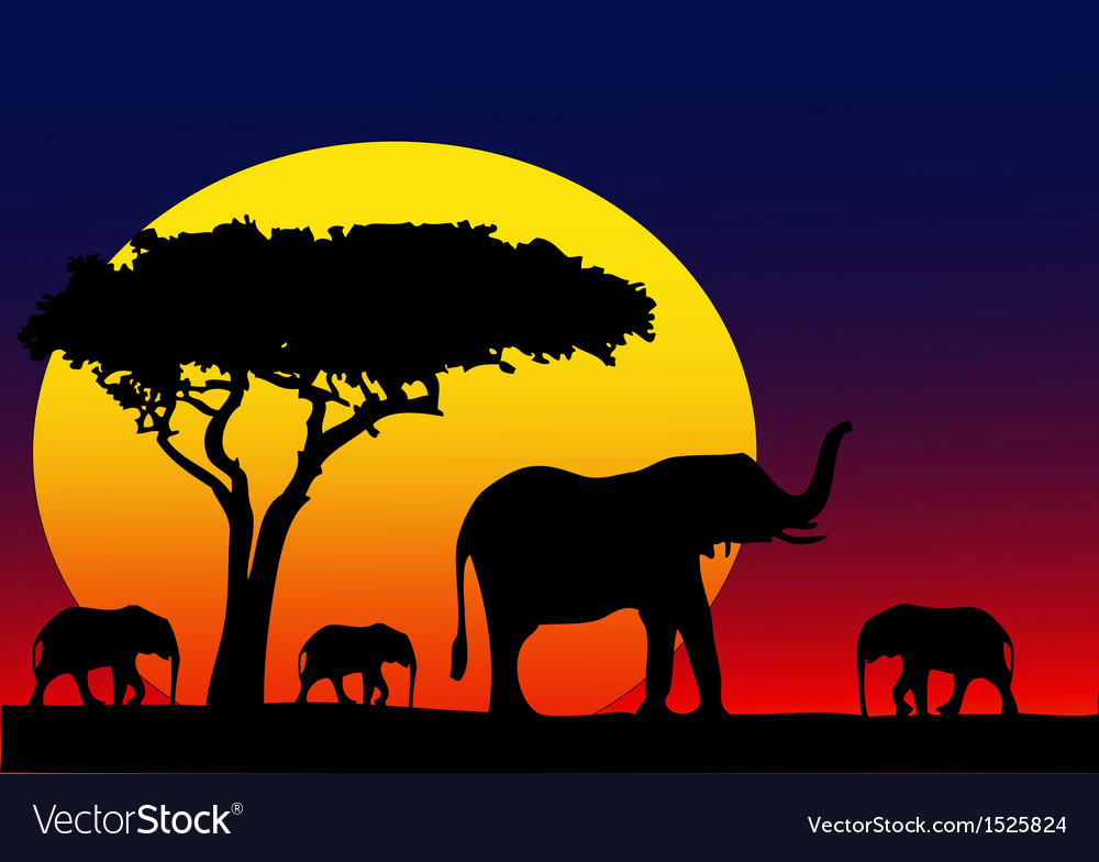 My africa vector | Price: 3 Credit (USD $3)