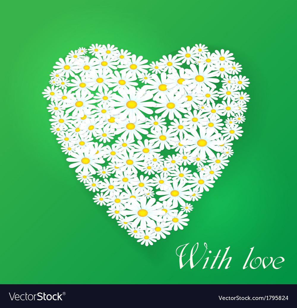 Romantic  chamomile vector | Price: 1 Credit (USD $1)