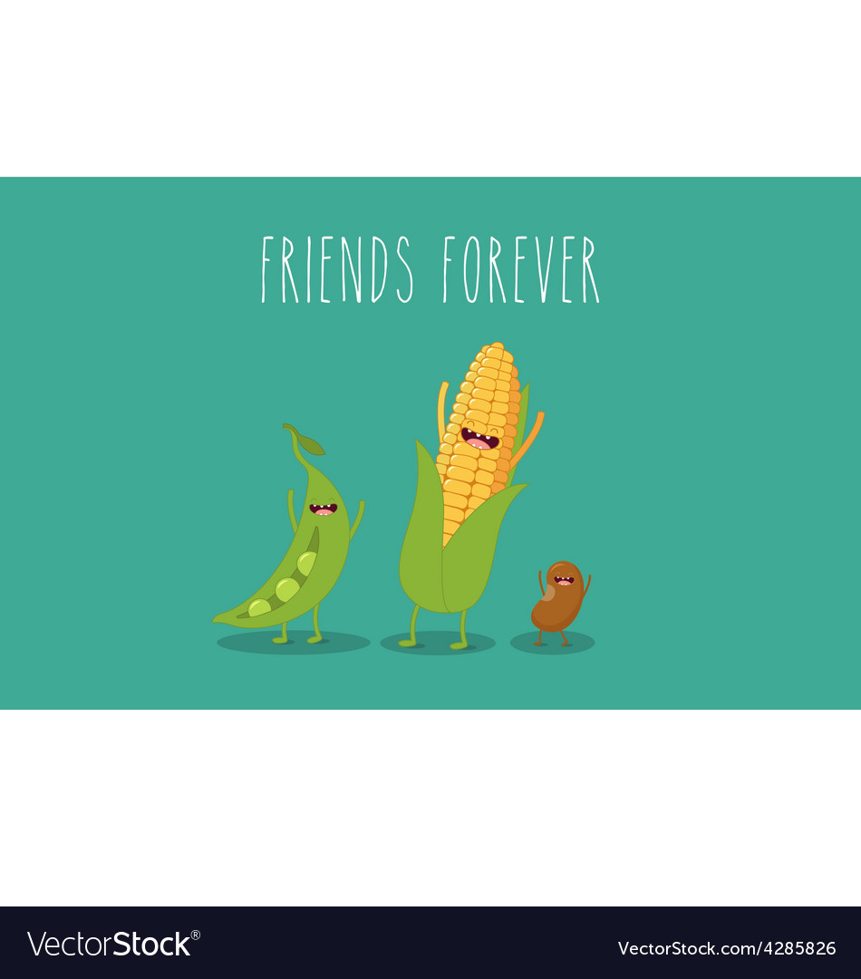 Vegetables corn vector