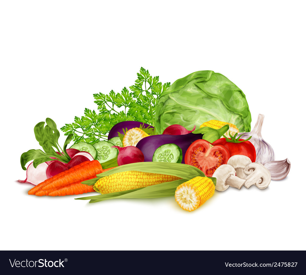 Fresh vegetables on white vector | Price: 1 Credit (USD $1)