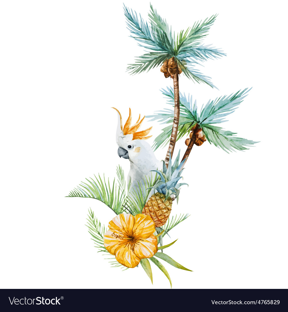 Watercolor tropical palm vector | Price: 1 Credit (USD $1)