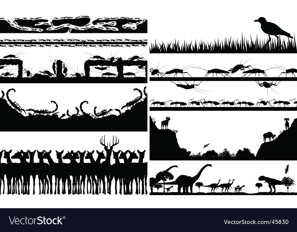 Animal foregrounds vector | Price: 1 Credit (USD $1)