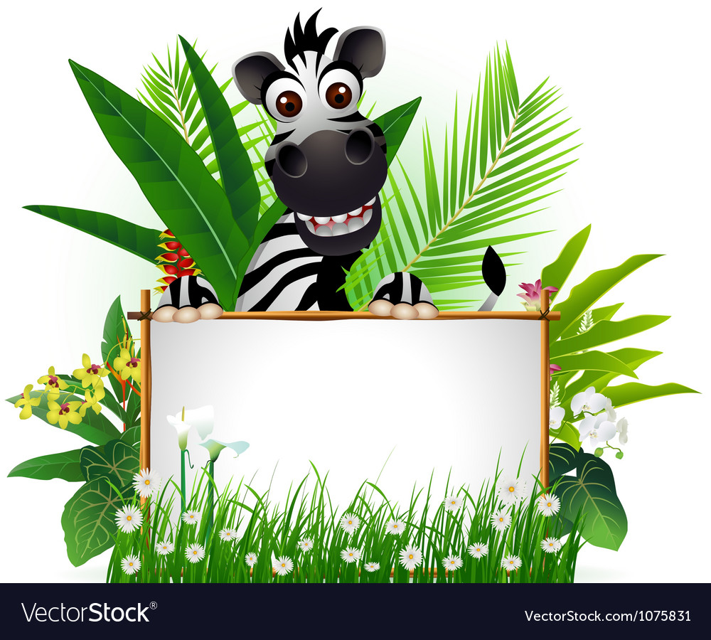 Funny zebra with blank sign and tropical forest vector | Price: 3 Credit (USD $3)