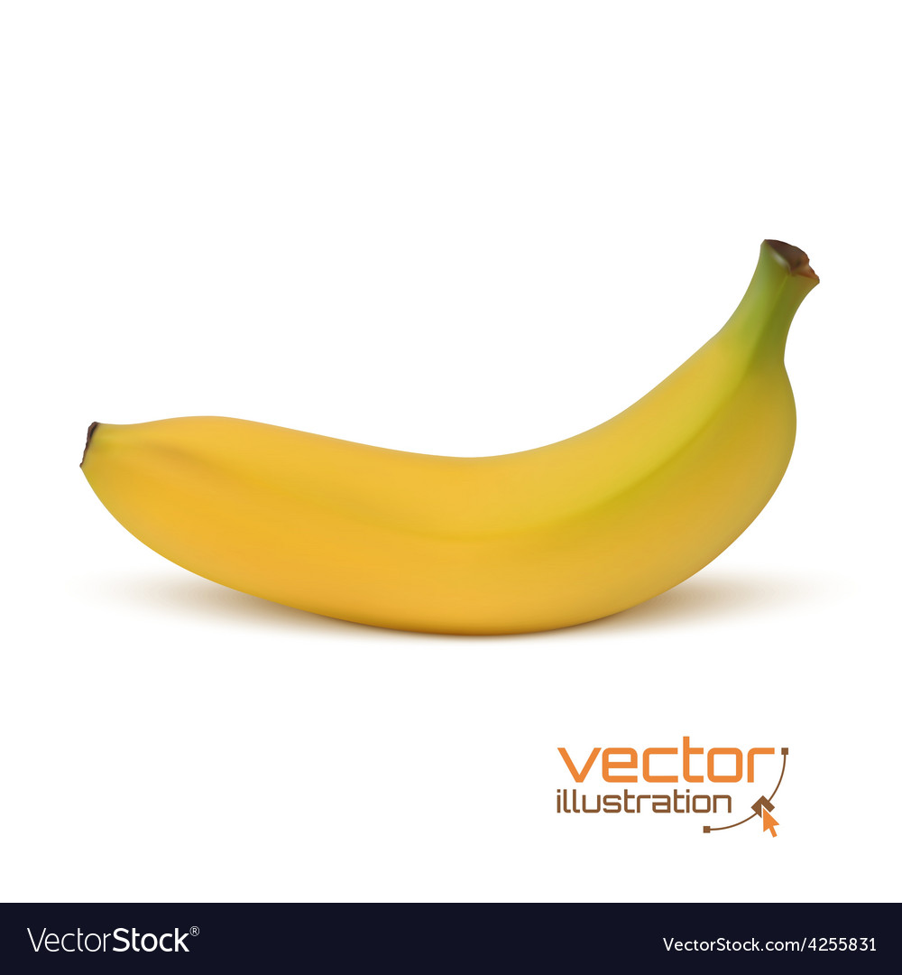 Realistic banana icon isolated on white vector | Price: 1 Credit (USD $1)