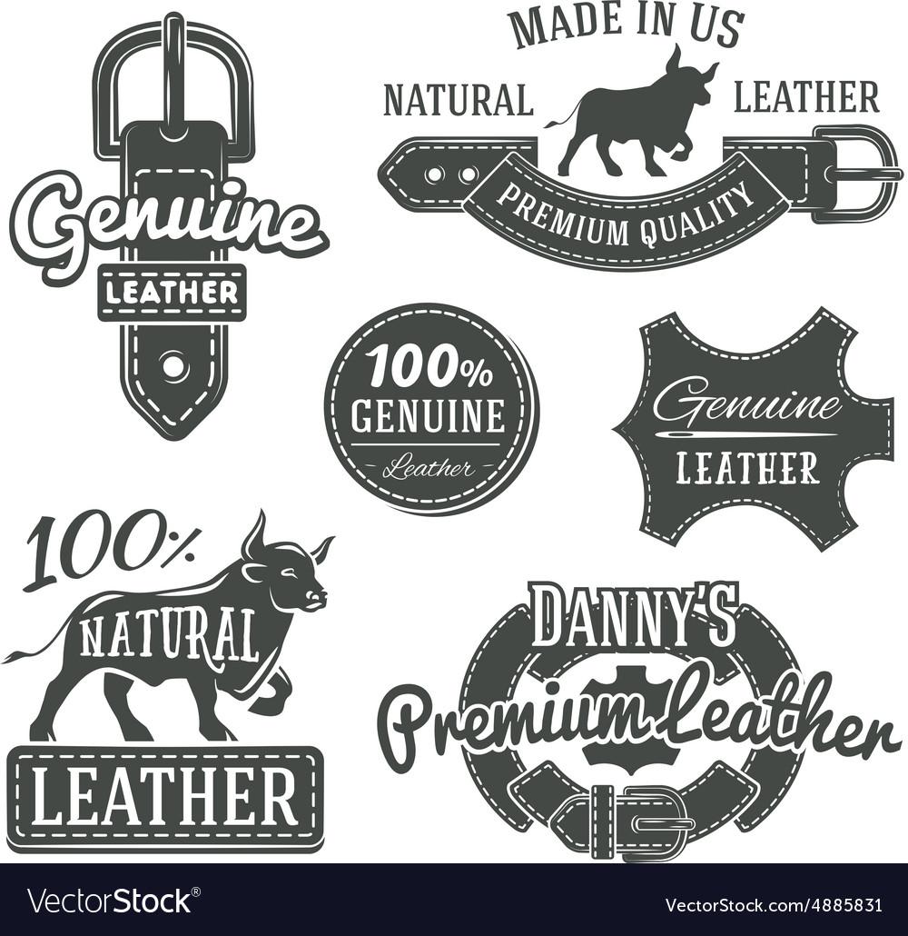 Set of vintage belt logo designs retro vector