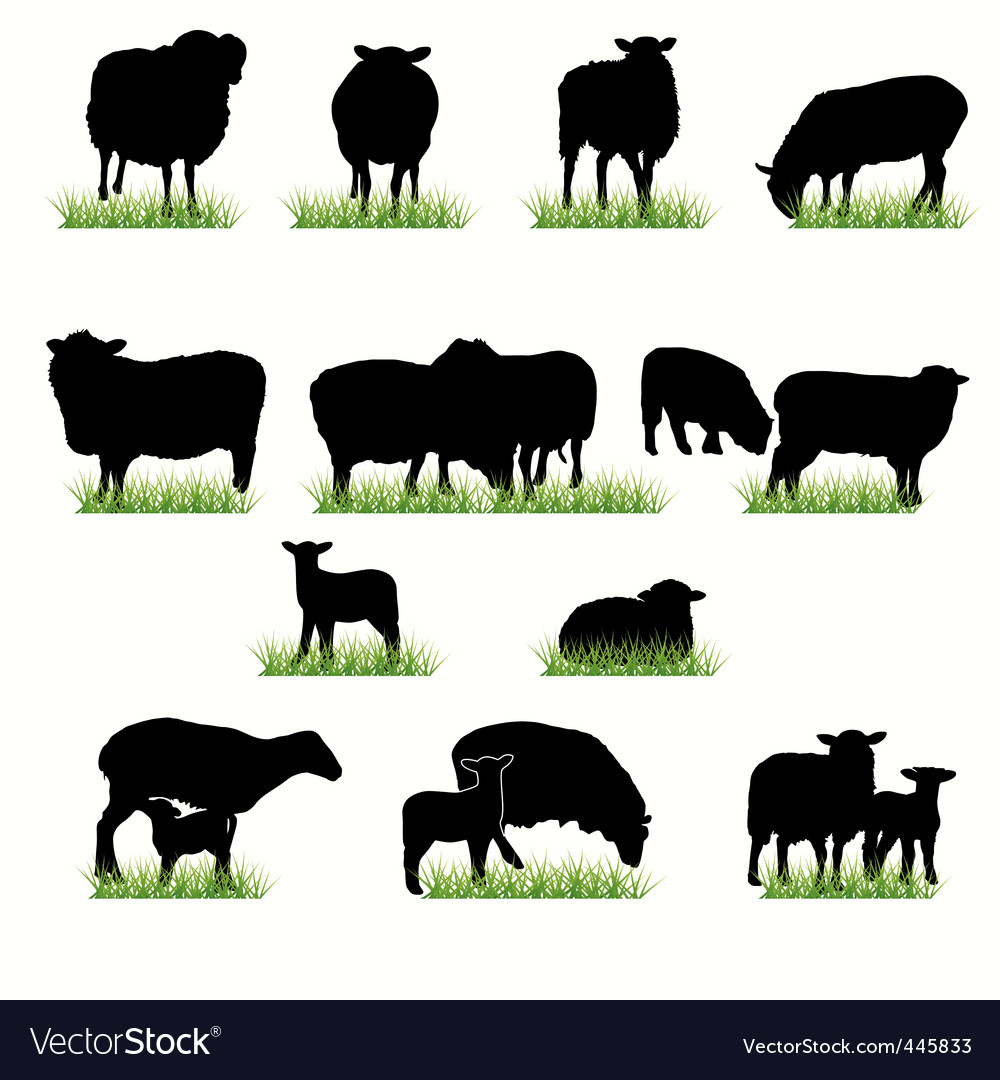 16 sheeps silhouettes set vector | Price: 1 Credit (USD $1)