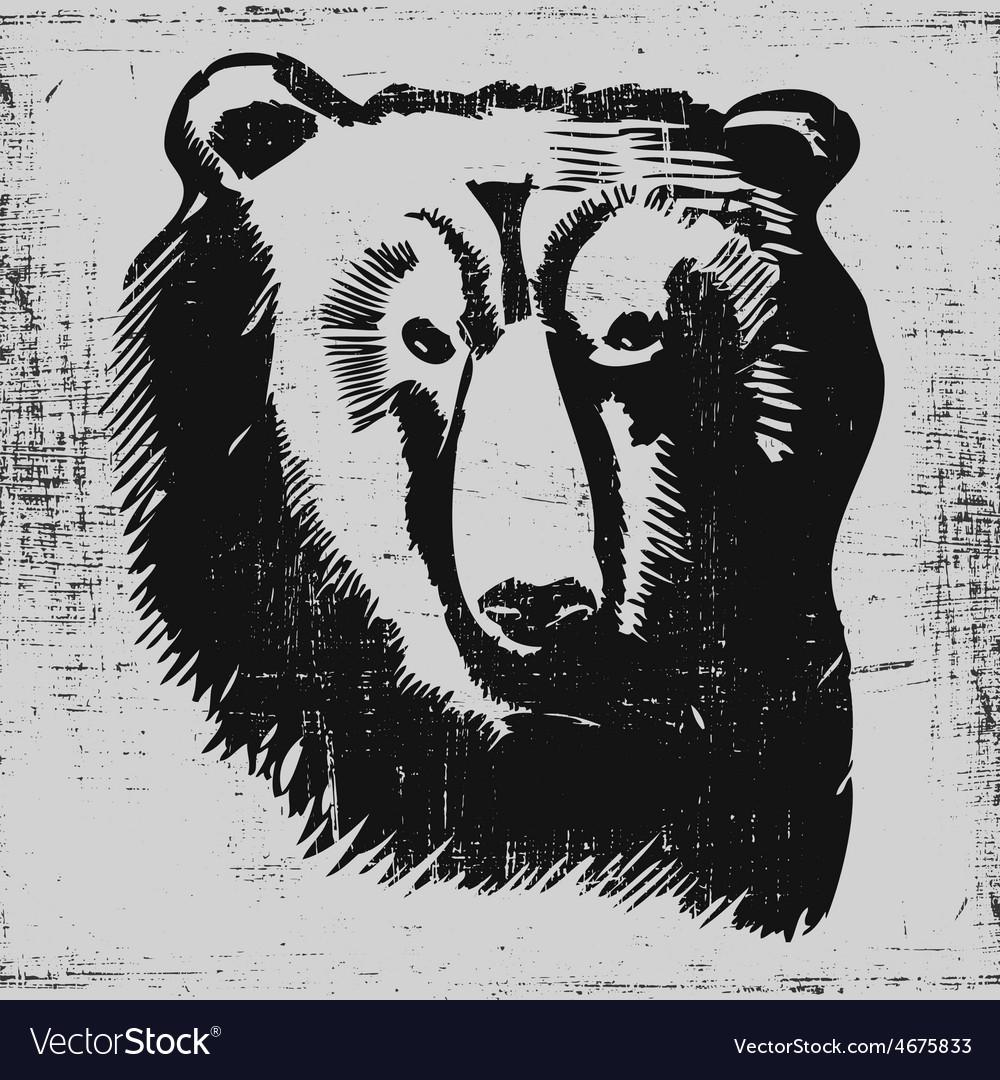 Bear head hand drawn sketch grunge texture vector | Price: 1 Credit (USD $1)