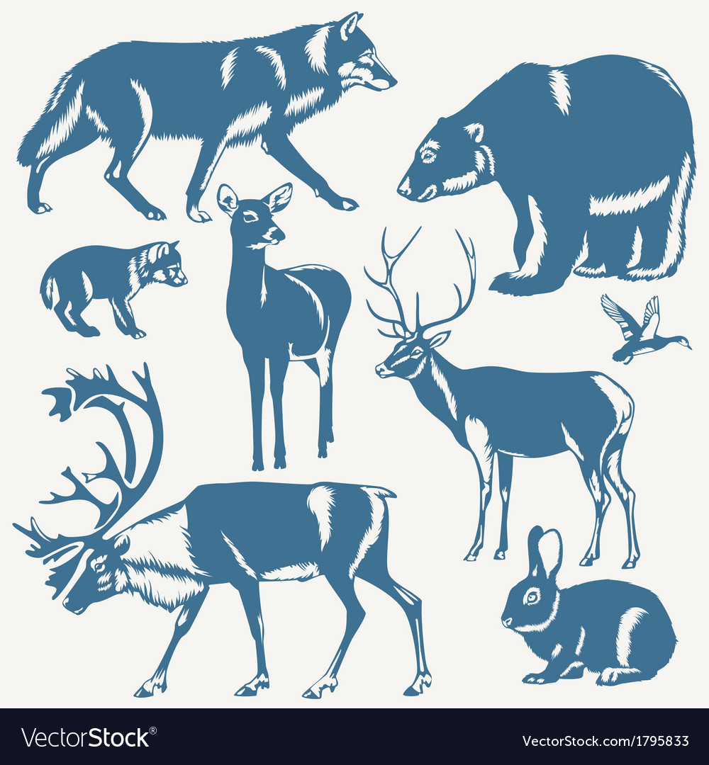 Northern animals vector | Price: 1 Credit (USD $1)
