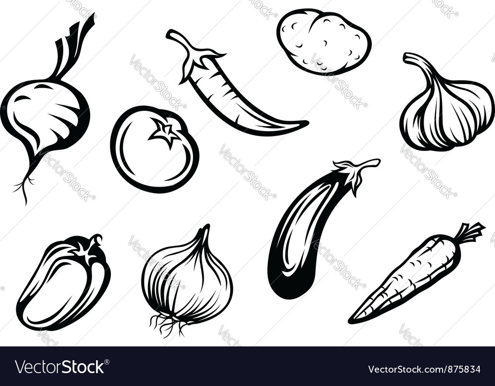 Set of fresh vegetables vector | Price: 1 Credit (USD $1)