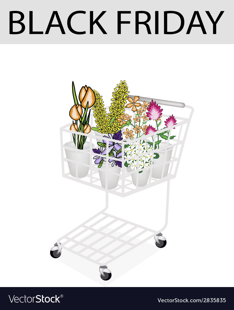 Flower and orchid in black friday shopping cart vector | Price: 1 Credit (USD $1)