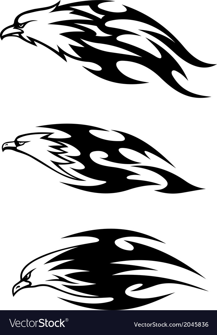 Eagle tattoos with flames vector | Price: 1 Credit (USD $1)