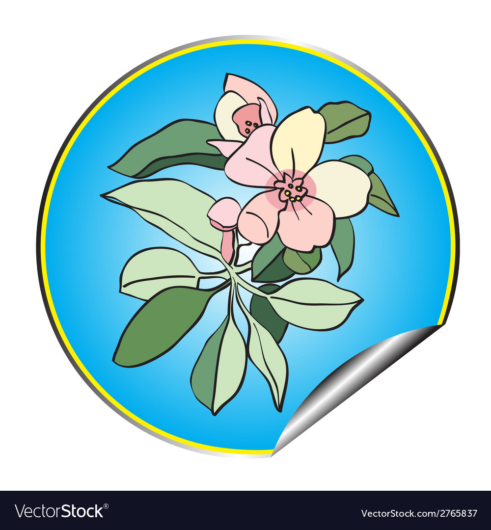 Apple flower sticker blue vector | Price: 1 Credit (USD $1)
