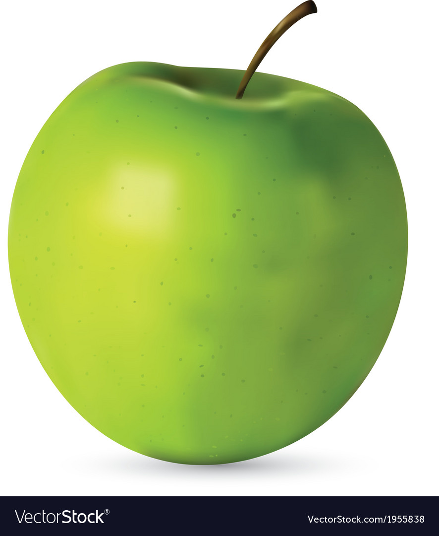 Realistic apple vector | Price: 1 Credit (USD $1)