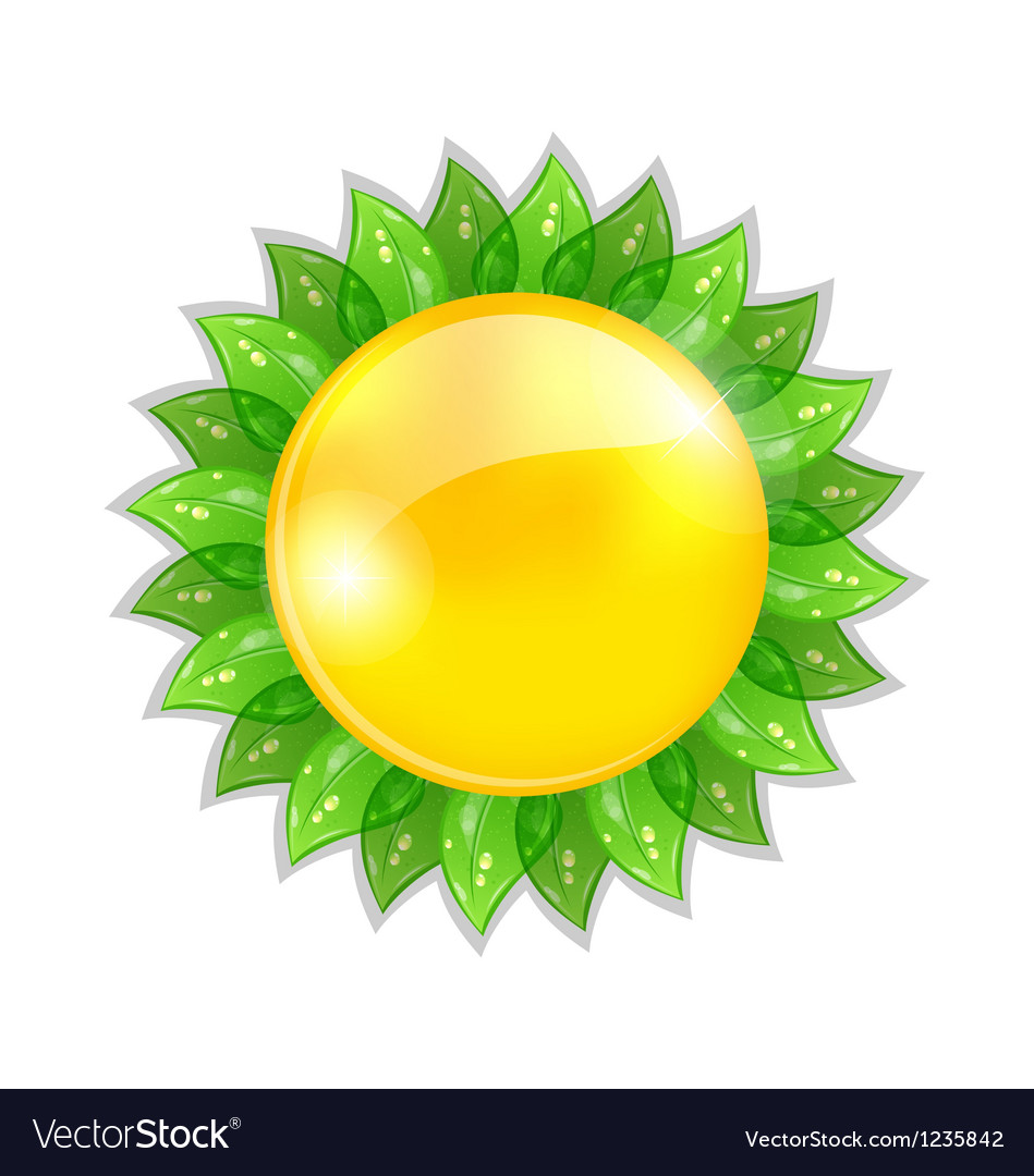 Abstract sun with leaves isolated on white vector | Price: 1 Credit (USD $1)