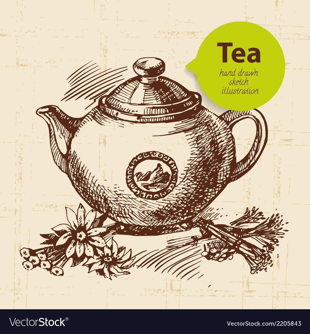 Tea vintage background hand drawn sketch vector | Price: 1 Credit (USD $1)