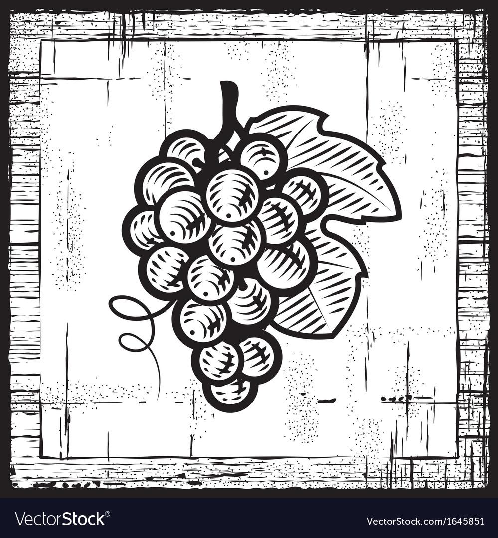 Retro grapes bunch black and white vector | Price: 1 Credit (USD $1)