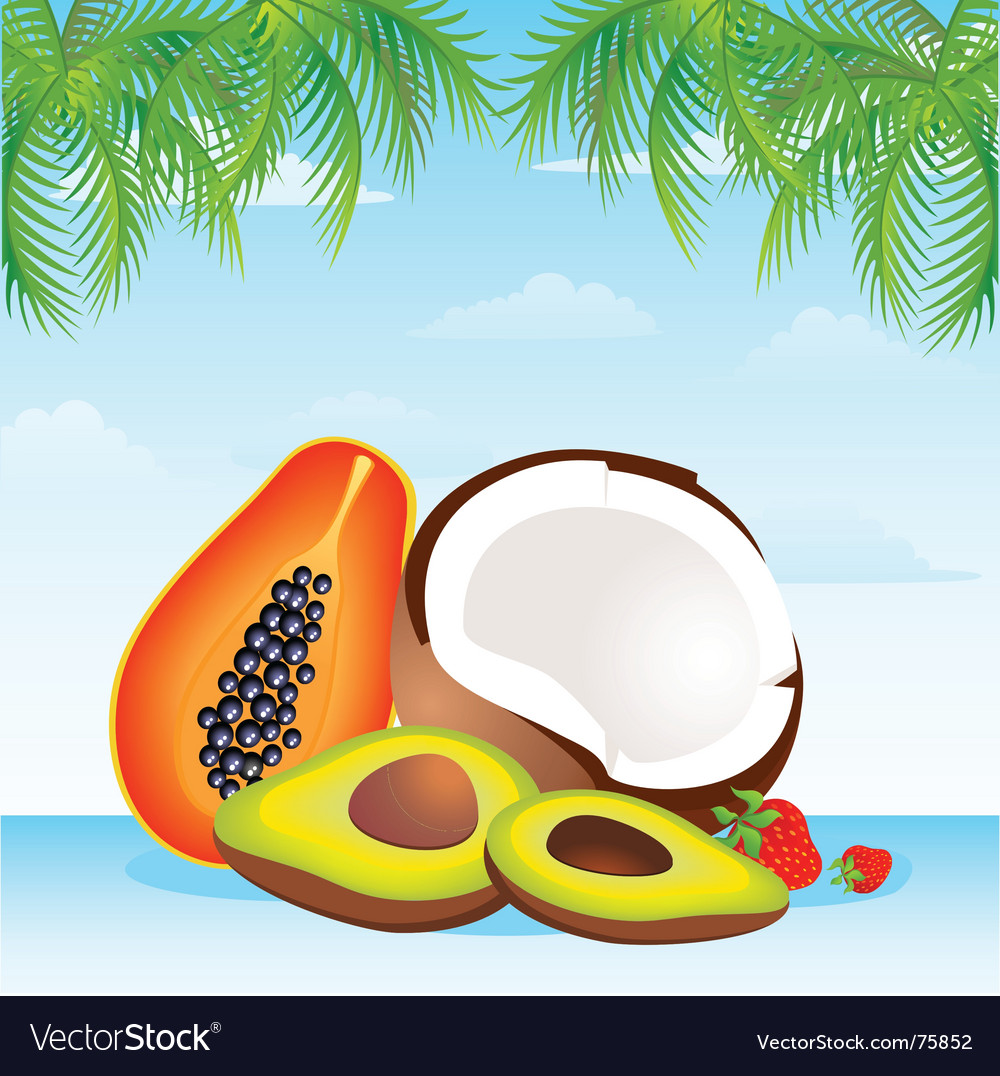 Island fruit vector | Price: 1 Credit (USD $1)