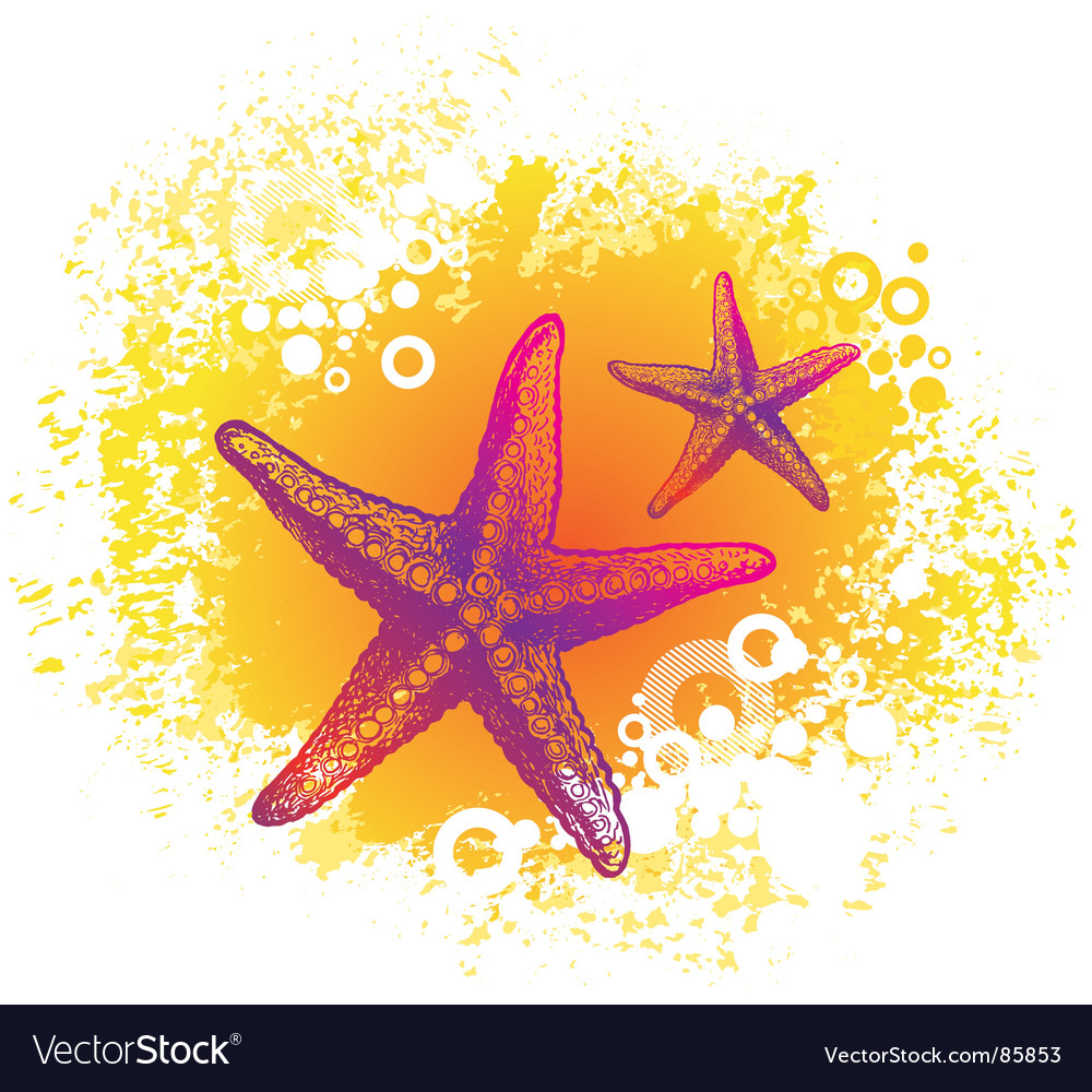 Drawing starfishes vector | Price: 1 Credit (USD $1)