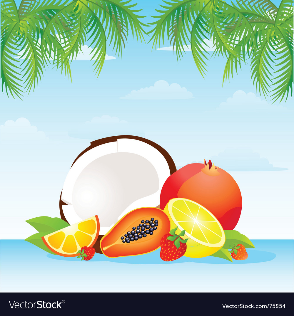 Fruit punch vector | Price: 1 Credit (USD $1)