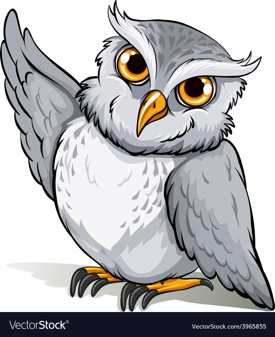 A wise owl idiom vector | Price: 1 Credit (USD $1)