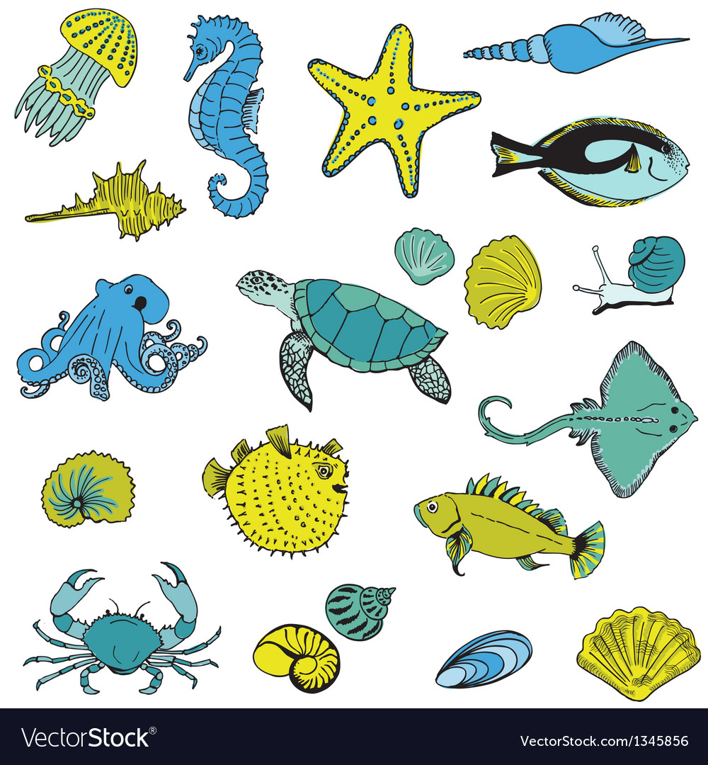 Sea life animals - hand drawn vector | Price: 1 Credit (USD $1)