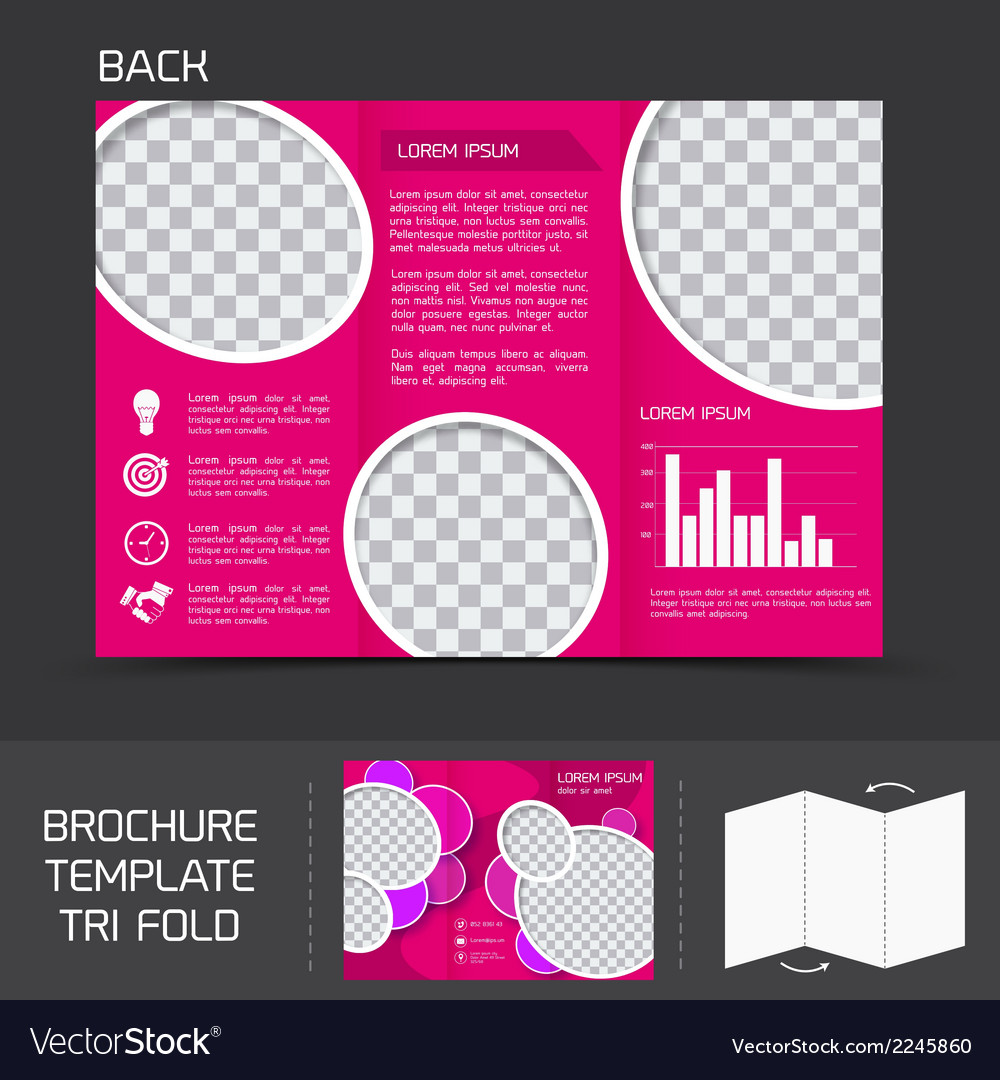 Brochure template tri fold vector | Price: 1 Credit (USD $1)