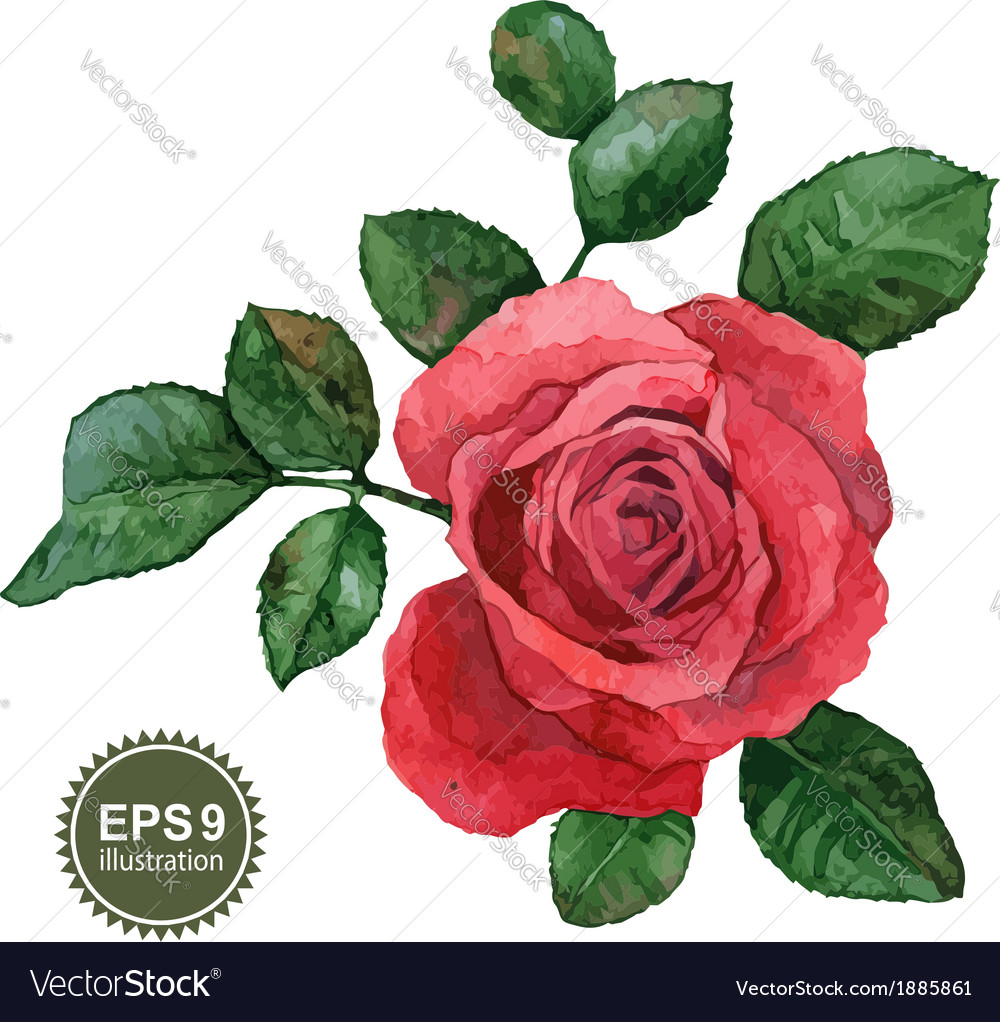Single rose vector | Price: 1 Credit (USD $1)