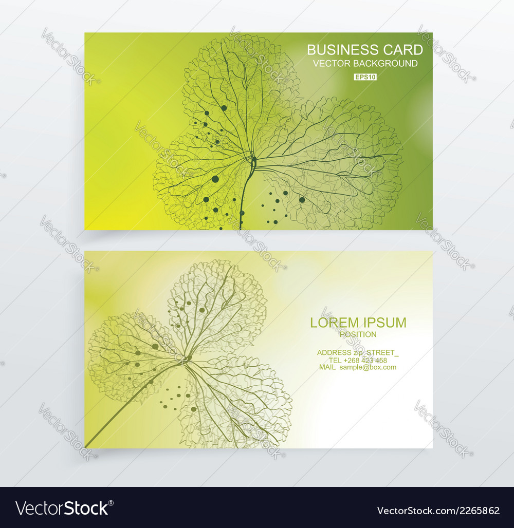 Abstract green colorful business card vector | Price: 1 Credit (USD $1)