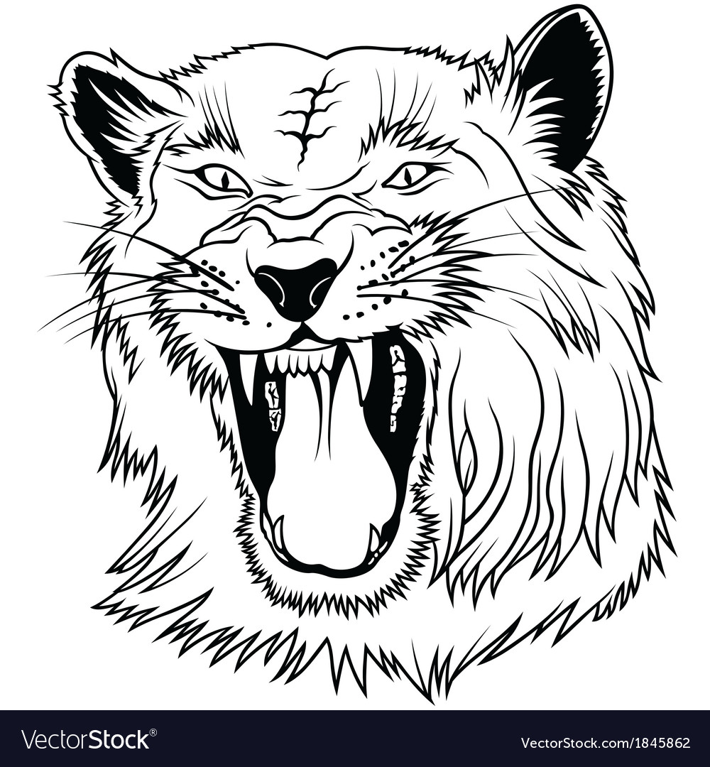 Big cat head vector | Price: 1 Credit (USD $1)