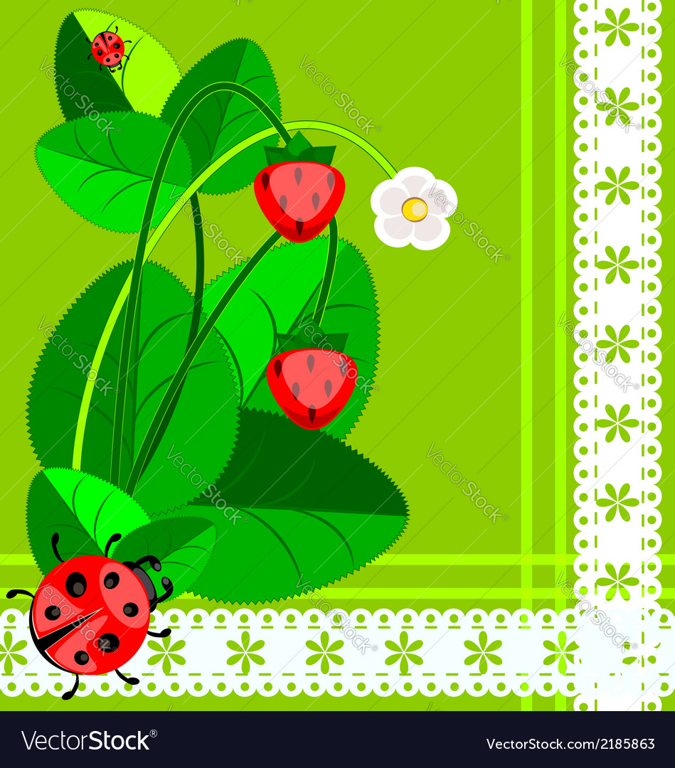Lace strawberry and ladybug vector | Price: 1 Credit (USD $1)