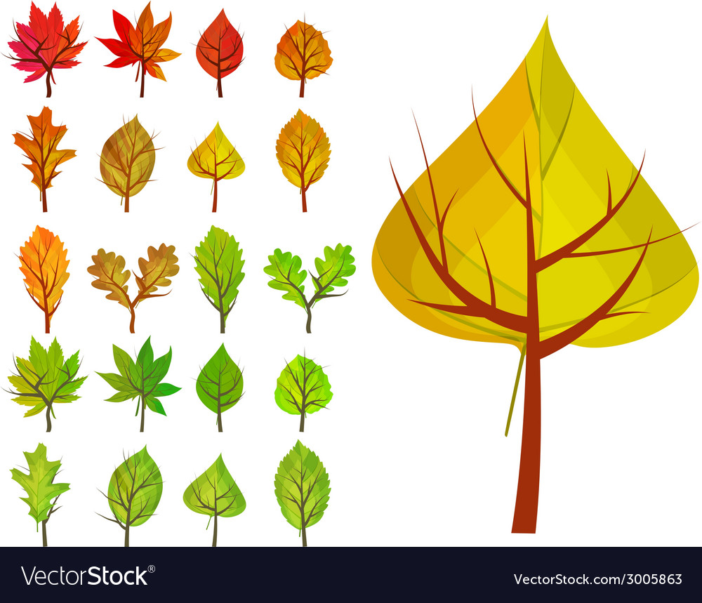 Set with different stylized trees vector | Price: 1 Credit (USD $1)