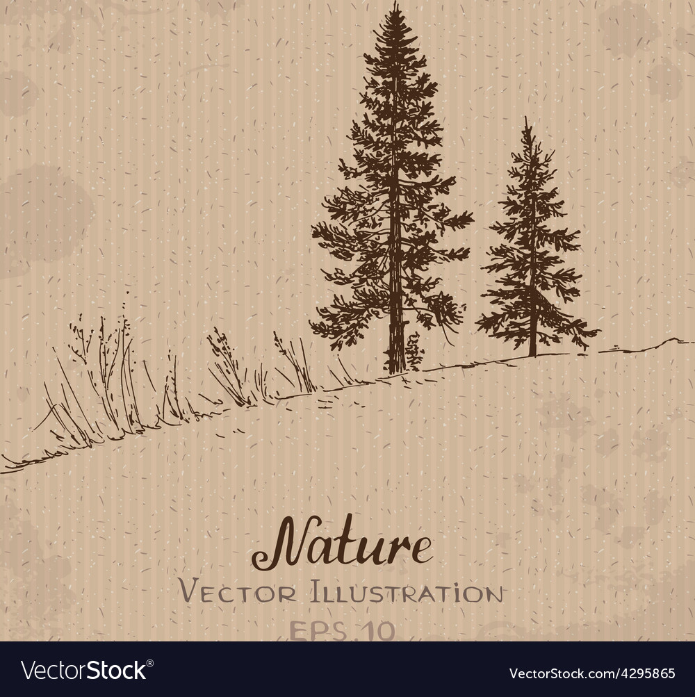 Two fir-trees vector | Price: 1 Credit (USD $1)